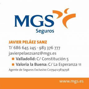 Javier Peláez: Agente de MGS SEGUROS SA.